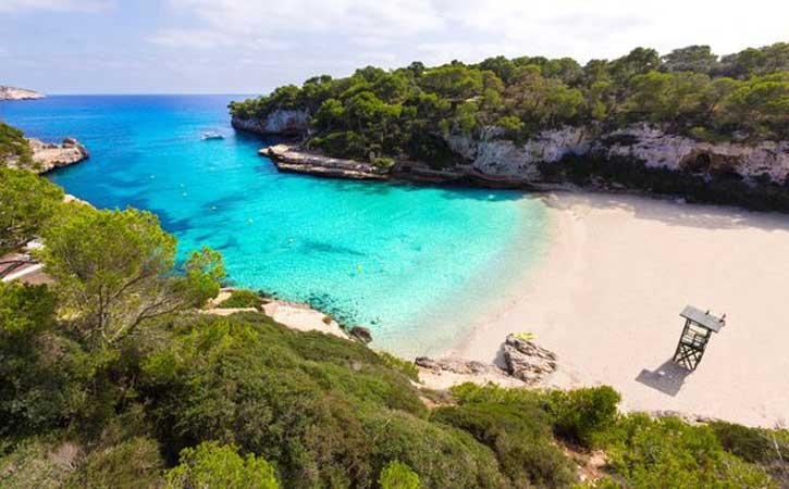 Ferry más hotel Mallorca en Julio en el Hotel Elegance en Playa del Arenal en Mallorca